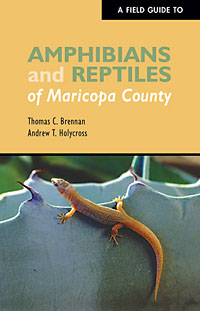 A Field Guide to Amphibians and Reptiles of Maricopa County